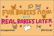 Fur babies now. Real babies later.