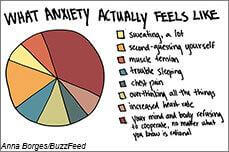 The pie chart shows that anxiety has a lot of different symptoms, including sweating, trouble sleeping, muscle tension, and more.